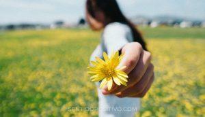 Energía positiva: 10 maneras sencillas de devolverle a tu vida positividad