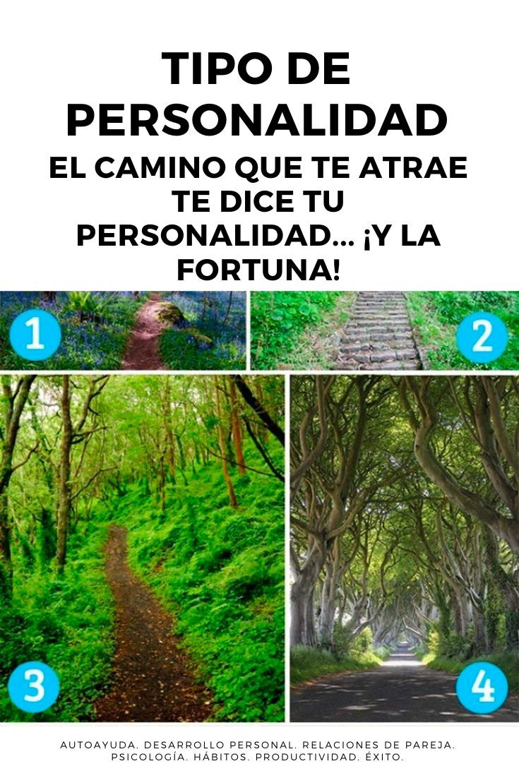 Tipo de personalidad: el camino que te atrae te dice tu personalidad... ¡y la fortuna!